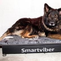 Smartviber_1